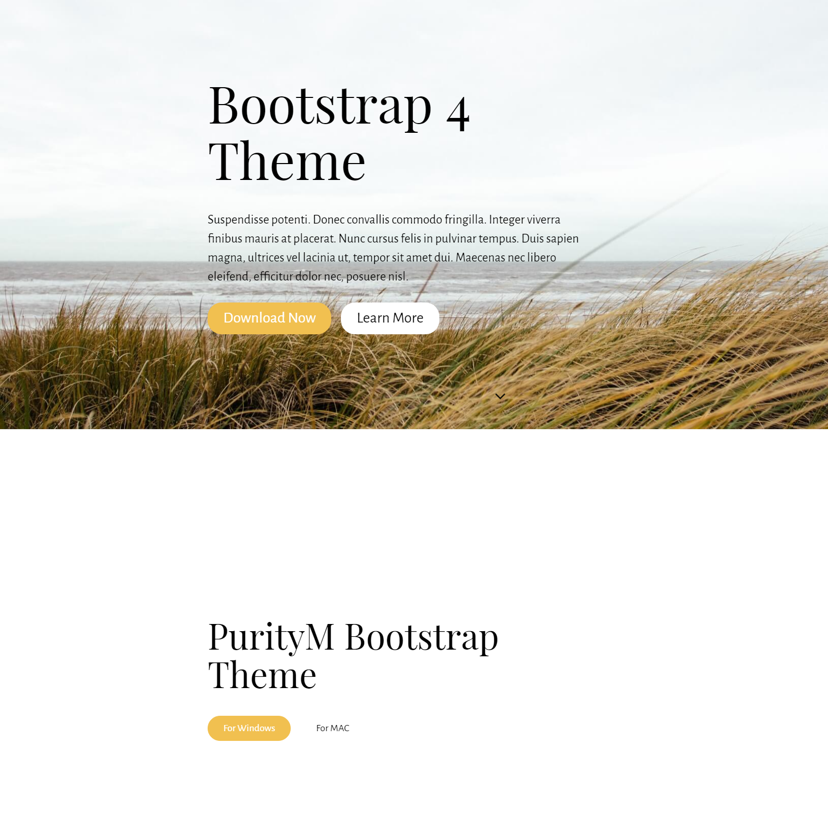 Responsive Bootstrap 4 Themes